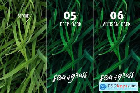 Sea of Grass Portrait Presets 4254637