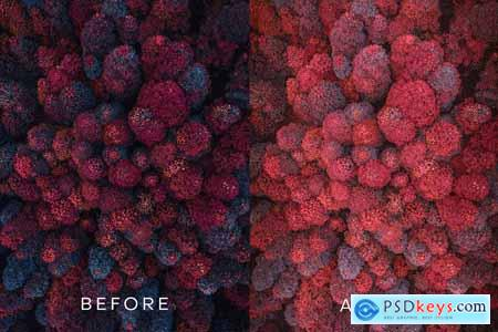 OBLIVION Quality Lightroom Preset 4239890
