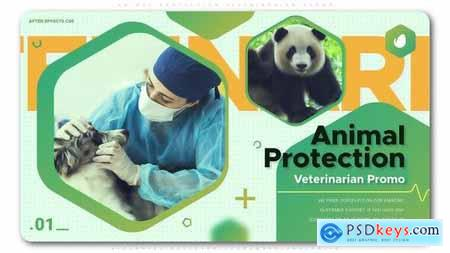 VideoHive Animal Protection Veterinarian Promo 24939415