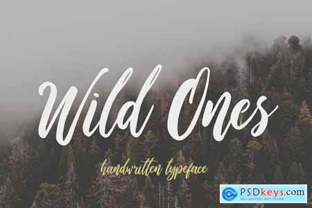 Wildy Wild Font Bundle! 4233060