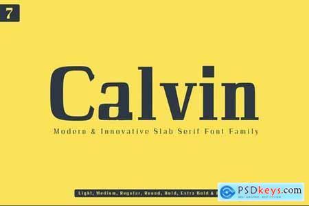 Calvin Slab Serif Font Family 4273190