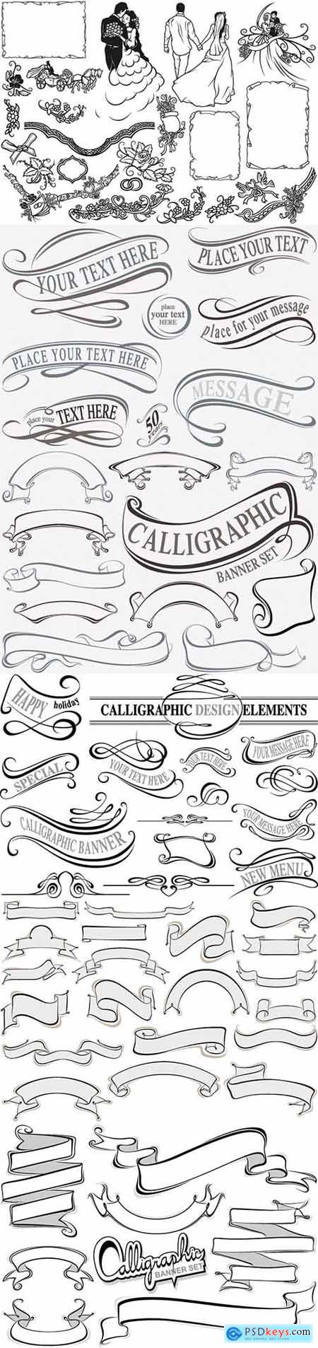 Calligraphic elements collection, design elements illustration