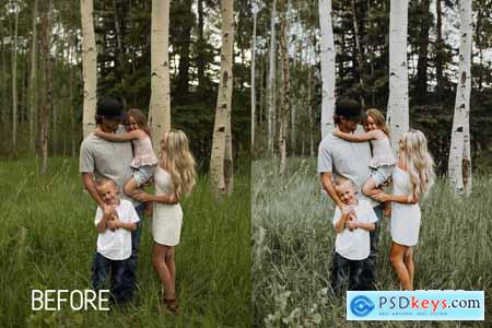 Perfect Family Lightroom Presets 4260461