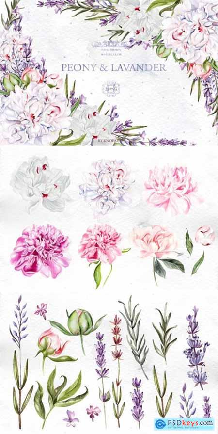 Watercolor Peony & Lavender 1996883