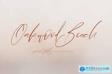 Oakwood Beach Script Font 3912430