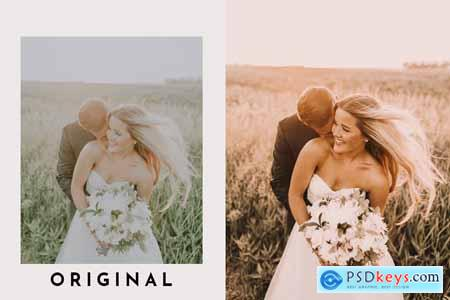 VSCO Inspired Lightroom Presets Pack 4269232