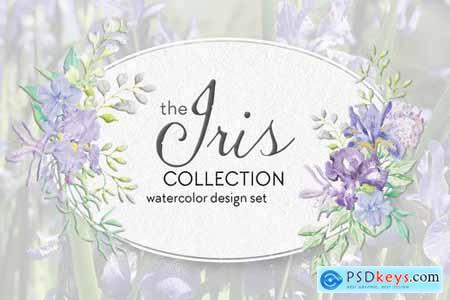 The Iris Collection Watercolor Clip Art Bundle