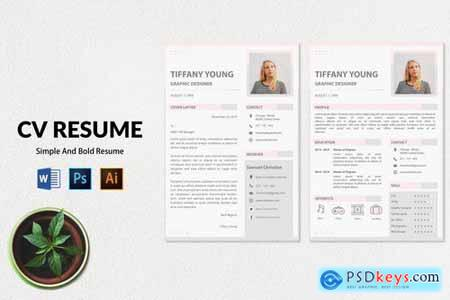 CV Resume Simple And Elegant