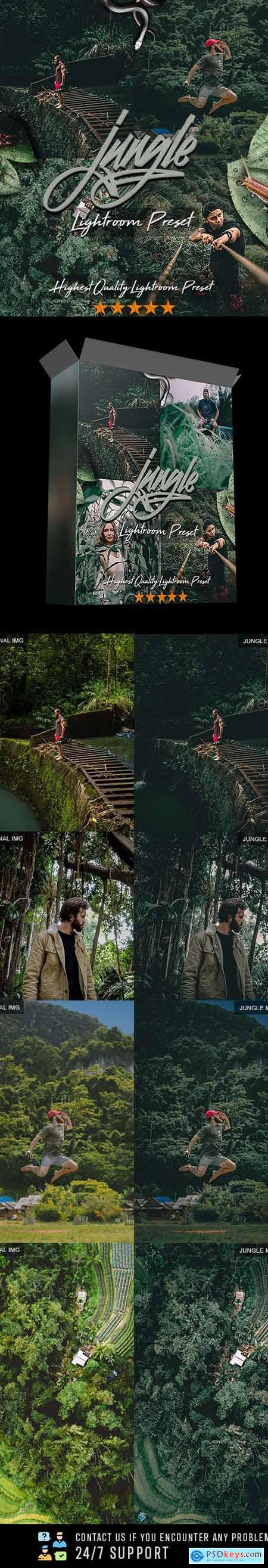 Jungle Moody PRO Preset 24885969