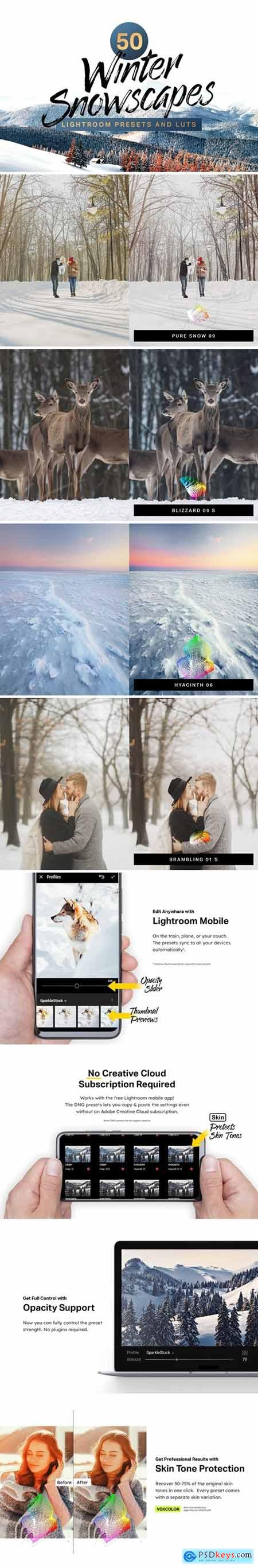50 Winter Lightroom Presets and LUTs 4285934