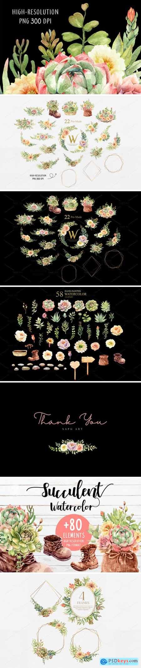 Watercolor Succulents and Shoe Pot 2013602