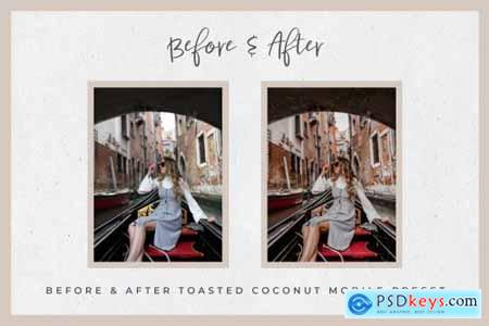 Toasty Lightroom Mobile Presets 3742030