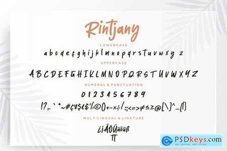 Rintjany Stylish Marker Typeface