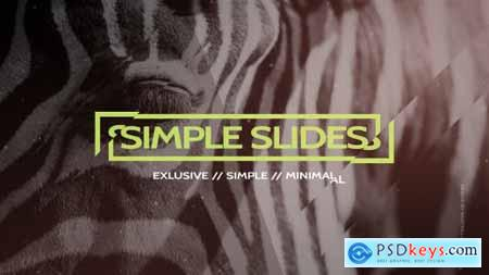 Videohive Simple Slides Project 13990068