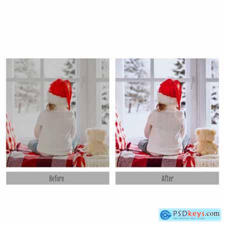 Christmas Lightroom Presets 4319890