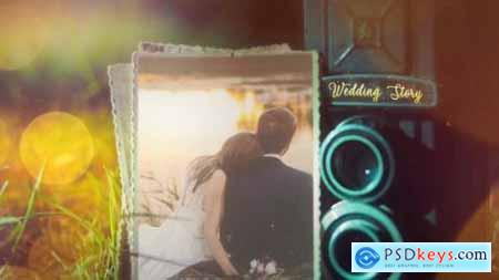 Videohive Wedding 24310524