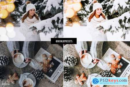 WINTER WONDERLAND LIGHTROOM PRESETS 4309502