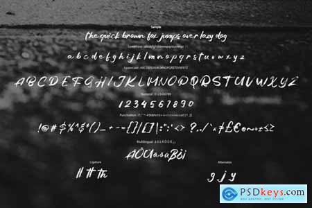 Balges Decorative Brush Script Font