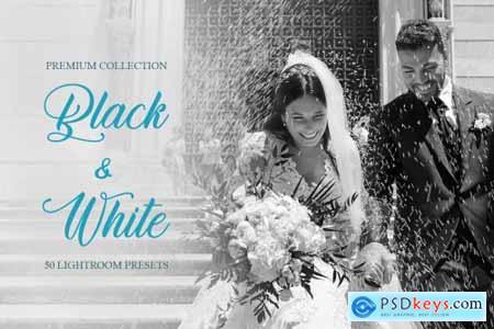 Black & White Presets for Lightroom 4286866