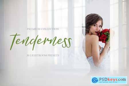 Tenderness Presets for Lightroom 4286646