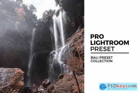 Bali Preset Collection