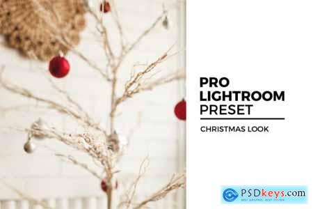 Christmas Look Lightroom Preset 4395308