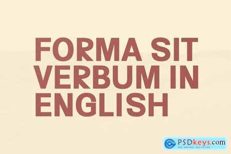 Hacim Simple Sans Serif Font Family 4394154