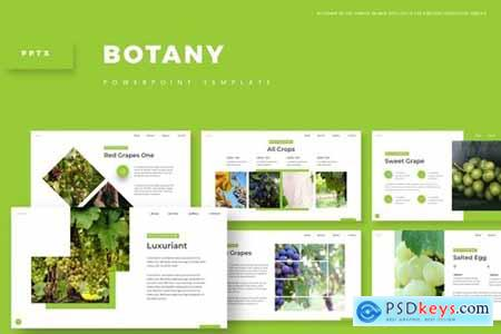 Botany Powerpoint, Keynote and Google Slides Templates