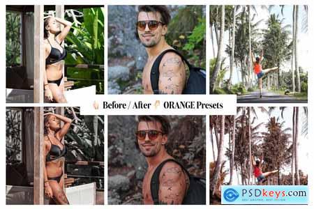 60+ Balifornia Presets Bundle 4338377