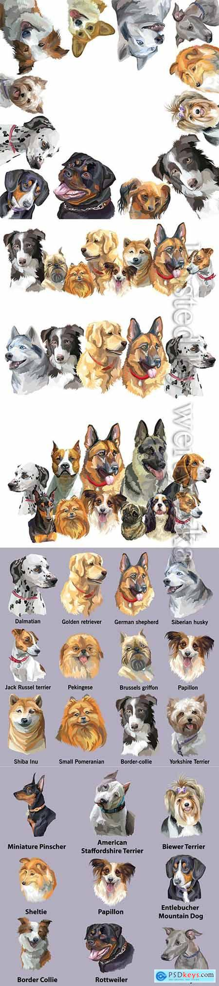 Set of portraits of dog breeds