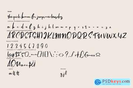 Angolia Script Font