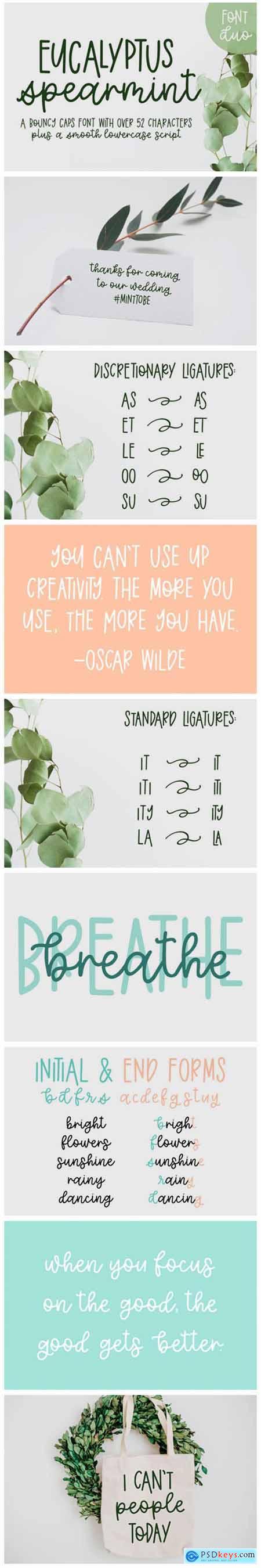 Eucalyptus Spearmint Font
