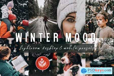 Moody WINTER MOOD Lightroom Presets 4284060