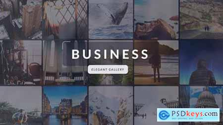 Videohive Business Elegant Gallery 19340209