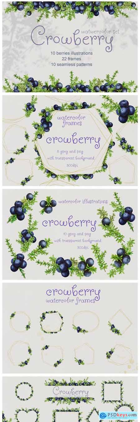 Crowberry Watercolor Set Illustrations 2128826
