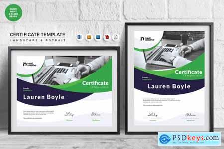 Professional Certificate Template Vol 18