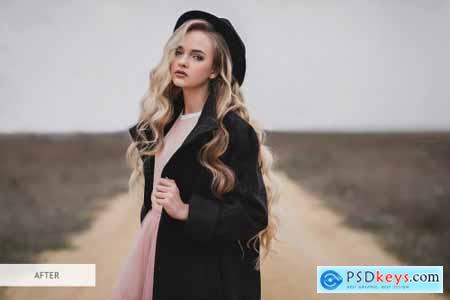 Moody Style Presets for Lightroom 4291241