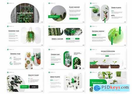 Plant - Powerpoint Google Slides and Keynote Templates
