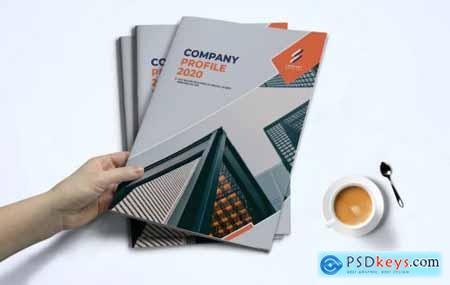 Company Profile370