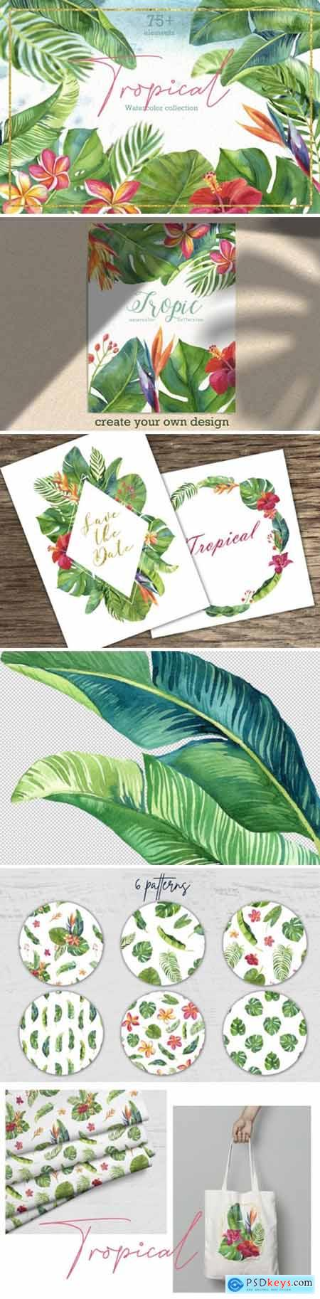 Tropic Leaves & Flowers Watercolor Set 2439196