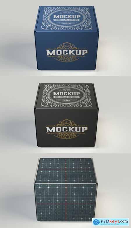Colored Box Mockup 4451897