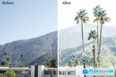 Palm Springs - Lightroom Presets 4387629