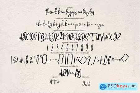 Brattsoon Modern Script Font 4458749