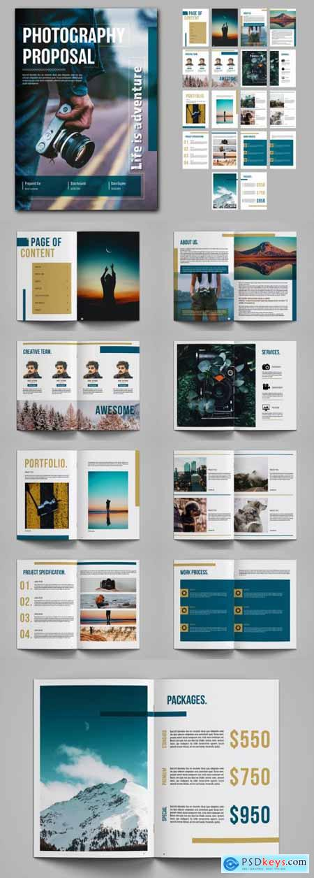 Photography Proposal Layout with Blue and Gold Accents 243925641