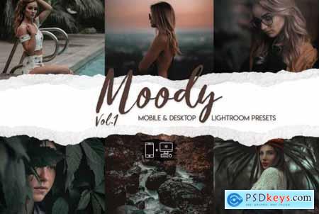 Moody Vol. 1 - 15 Premium Lightroom Presets