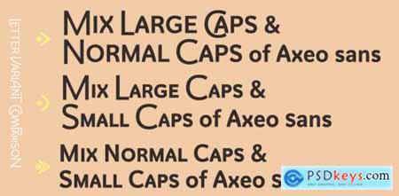 Axeo Sans Complete Family