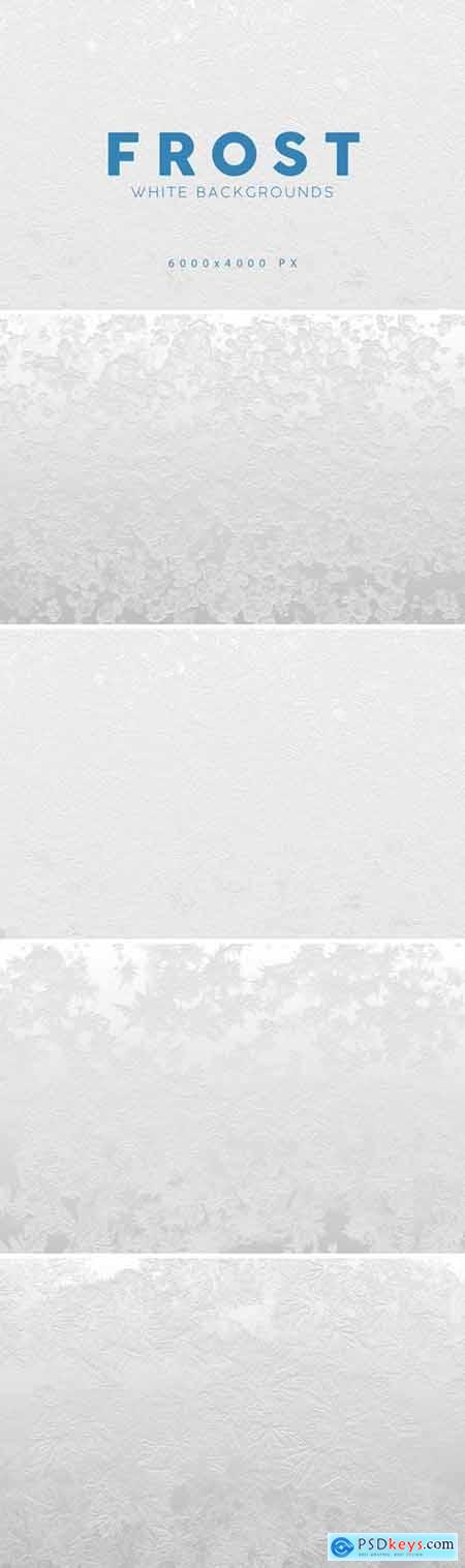 White Frost Winter Backgrounds