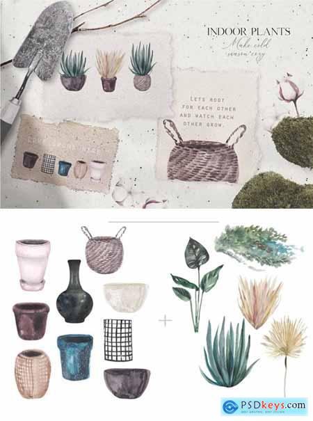 Watercolor hand-drawn indoor plants