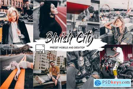 BLUISH CITY LIGHTROOM PRESET + LUT 4437576