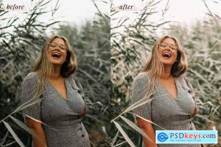 Phoenix Lightroom Presets 4437457